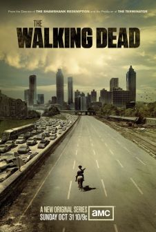 The Walking Dead Season 1 One Sheet Television Poster