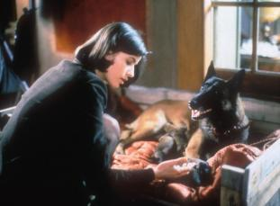 TROIS COULEURS: ROUGE, (aka THREE COLORS: RED), Irene Jacob, 1994, ©Miramax